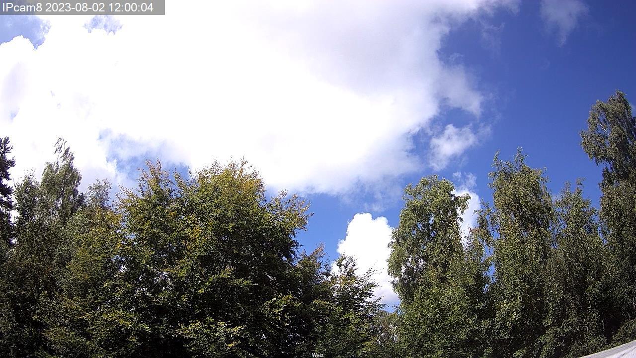 ipcam8_13.jpg